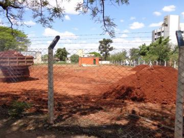 Maringa Zona 01 Comercial Locacao R$ 15.000,00  Area do terreno 1699.42m2