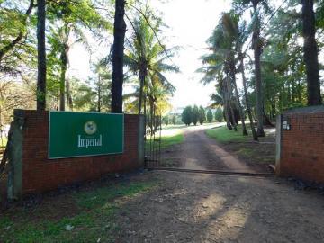 Maringa Loteamento Sumare Rural Locacao R$ 8.000,00 4 Dormitorios  Area do terreno 20000.00m2