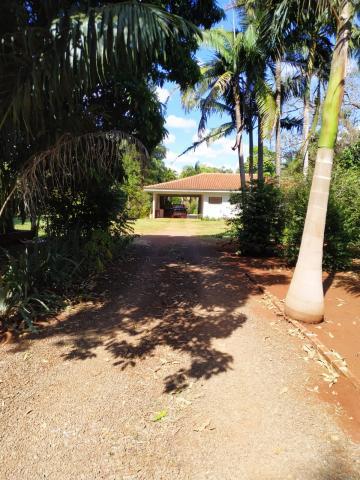 Maringa Jardim Munique Rural Venda R$2.800.000,00 3 Dormitorios  Area do terreno 10373.00m2